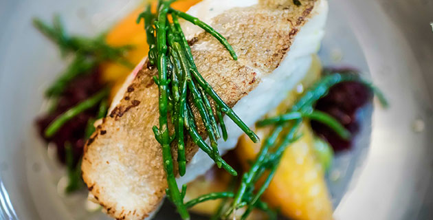 New spring menus at ely wine bar & ely executive chef's experience with 108@Noma