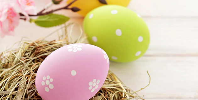 spring into action with ely's fun Easter egg hunt