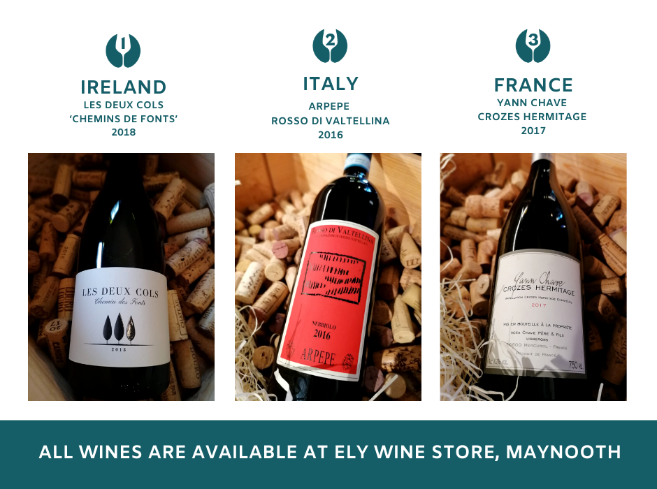 In the spirit of the Rugby World Cup 2019, ELY WINE STORE, Maynooth are hosting their own World Cup of Wines! You get to vote for your favourites!